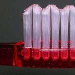 Cepillado de dientes, técnica, arte y devoción